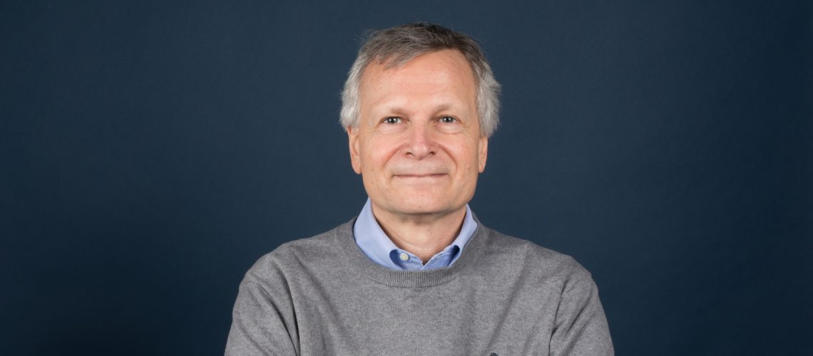 Image result for dani rodrik